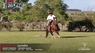 Miniatura video Lote 20 - Remate El Redimido