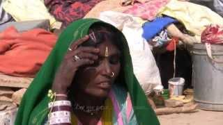 getlinkyoutube.com-Singing on Broken Ground: Songs of the Jogi Nath Kalbelia, Rajasthan