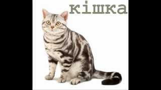 getlinkyoutube.com-Голоси свійських тварин для дітей