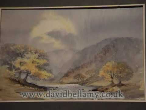 David Bellamy paints a watercolour