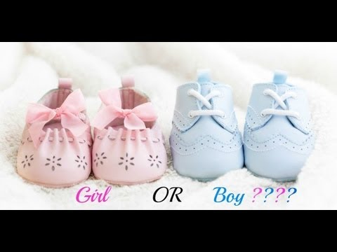 Gender Reveal! Boy or Girl????