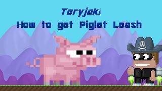 getlinkyoutube.com-Growtopia - How to get piglet leash