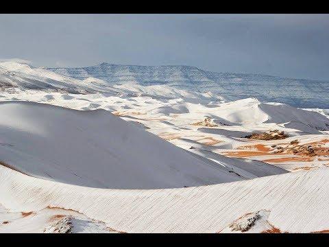 Pantaños de Ola Polar Letra y Video