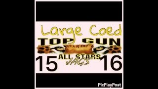 getlinkyoutube.com-Top Gun Large Coed 2015-2016 music