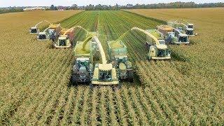 getlinkyoutube.com-Maishäckseln EXTREM | John Deere | Fendt | Case IH | Traktoren im Einsatz | AgrartechnikHD