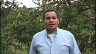 getlinkyoutube.com-Dario Aldana y su banco de proteinas
