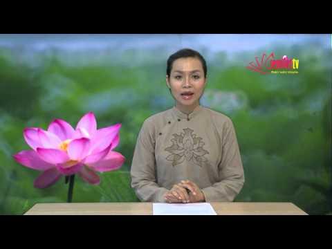 [SenViet tv] - Tin Phật Giáo tuần 2 tháng 6/2013