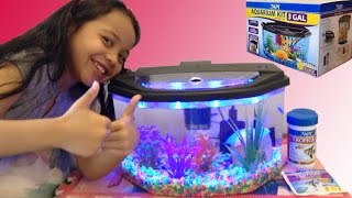 getlinkyoutube.com-Aquarium Starter Kit Fun With Alanna!