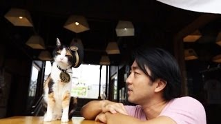 """getlinkyoutube.com-SUGOI JAPAN - สุโก้ยเจแปน EP#1-11 """"รถไฟสายแมวเหมียว"""" Tamachan (Wakayama)"""