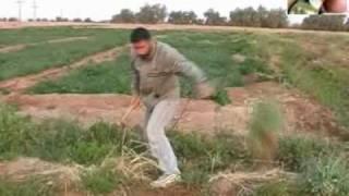 getlinkyoutube.com-صيد الحسون على الطريقة السورية