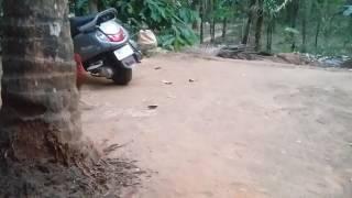 Kerala Funny Hen Fucking
