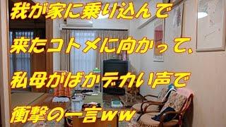 getlinkyoutube.com-【スカッとする話】我が家に乗り込んで来たコトメに向かって、私母がばかデカい声で衝撃の一言!!ww