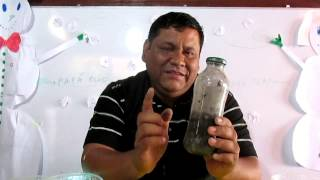 getlinkyoutube.com-Insecticida organico de ceniza