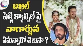 Nagarjuna Gives Clarity on Akhil and Shriya Bhupal Marriage   Latest Celebrity Updates   News 90