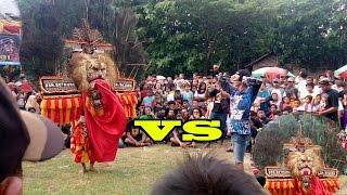 getlinkyoutube.com-Nekat !!! pemuda ini menantang Reog Ponorogo Asli Singo barong Malik di Banaran Geger Madiun