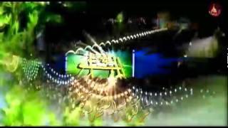 getlinkyoutube.com-مولد الإمام المهدي (عج) - مهدي العبودي