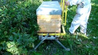 Déchargement palettes de 3 ruches