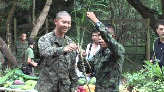 getlinkyoutube.com-US Marines Snake Eating and Jungle Survival Training in Thailand