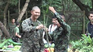 getlinkyoutube.com-US Marines Snake Eating and Jungle Survival Training in Thailand
