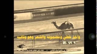 getlinkyoutube.com-فوق حرة عمانية | شيلة _ مفرج بن عياف الصيعري |2014