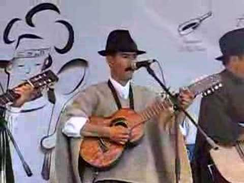 Videos Related To 'musica Carranguera - Folclor Colombiano'