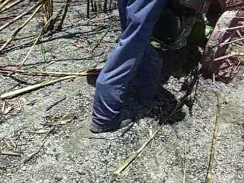 Josemauricio - Colhedora de cana-de-açúcar - mini-colhedora em cana queimada.wmv