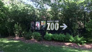 Family Fun at the Prospect Park Zoo, Sea Lion Show