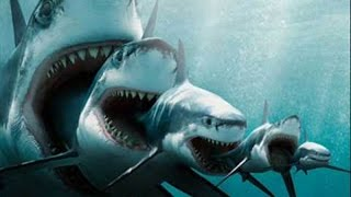 getlinkyoutube.com-【都市伝説】巨大ザメ「メガロドン」はまだ存在する?深海で撮影された巨大ザメの正体は?