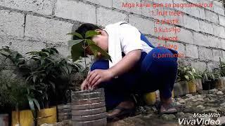 Marcotting tutorial(tagalog)