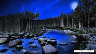 getlinkyoutube.com-Bubbling Stream At Night Water Sounds White Noise   Crickets & Nature   Sleep, Study