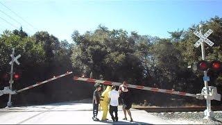getlinkyoutube.com-CSX Tropicana Train Gate Hit Group Of People On The Head