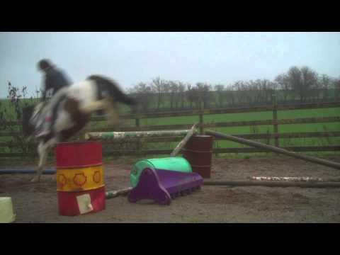 Murphy jumping :)