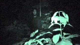 getlinkyoutube.com-Penampakan Hantu di Bondowoso.Part2