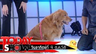 getlinkyoutube.com-TODAY SHOW 4 ต.ค.58 (2/3) แปลก เฮ ซ่าส์  มะขวิด หมาแสนรู้