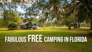 getlinkyoutube.com-Fantastic, Free Camping in Florida