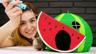 How to Draw Watermelon House with 3D PEN for Pet Rat