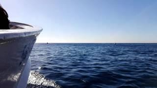 getlinkyoutube.com-Capri Marina Piccola e Faraglioni in barca