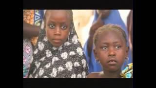 Rogo at Large: Maiduguri; Living A Life Of Transition
