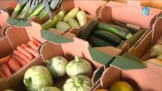 Bio Alverde, inserción laboral a través de la agricultura ecológica