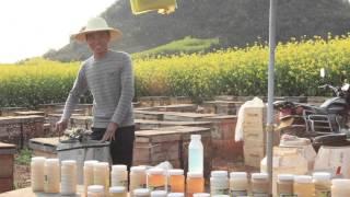 getlinkyoutube.com-пчеловоды китая