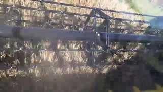 Claydon Drilled Winter Barley 11T/Ha Germany