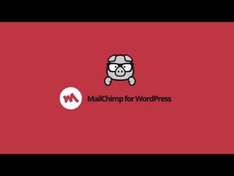 MailChimp for WordPress - Introduction