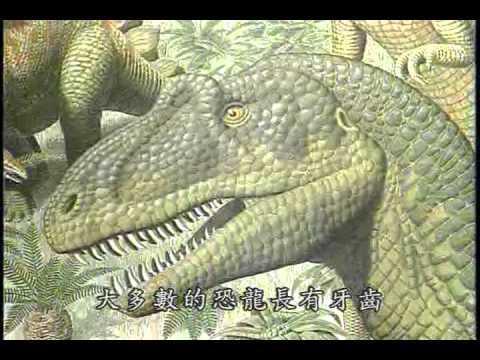世紀之謎—鳥的起源與演化(下) - YouTube