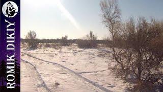 getlinkyoutube.com-Зимняя охота на зайца.  (1-3 декабря 2016г)