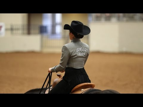 Baylor Equestrian: Highlights vs. TCU