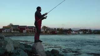 getlinkyoutube.com-Shore fishing Norway a lure for Straumen