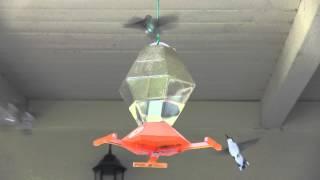 The Humming Bird Feeder