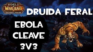 getlinkyoutube.com-Druida Feral 3v3 Ebola Cleave # 2 | Jakilo Style