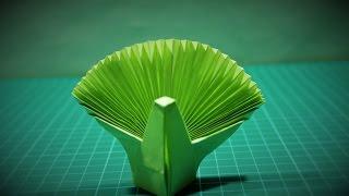 getlinkyoutube.com-Origami: Cara Membuat burung merak