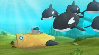getlinkyoutube.com-OCTONAUTS  Orcas
